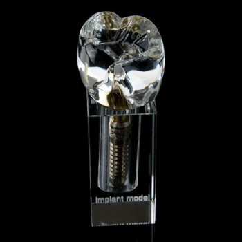 Dental Implant Crystal Modelo M2019-II