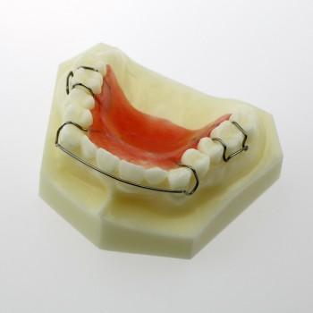 Modelo Dental Hawley Retainer Modelo # 3007 01